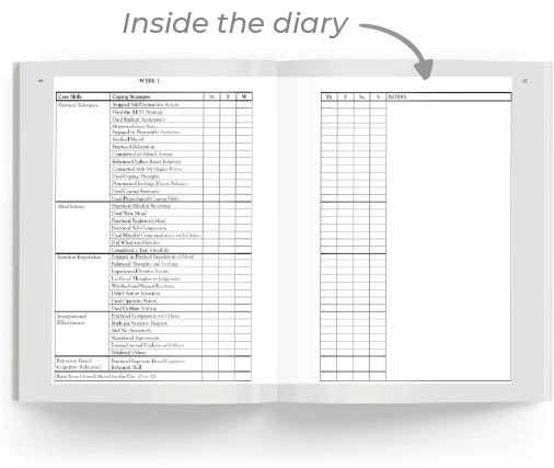 Inside the diary - image of open diary